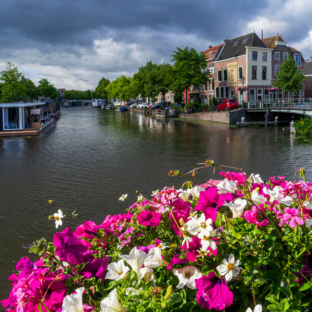 guided photography tour of Leiden